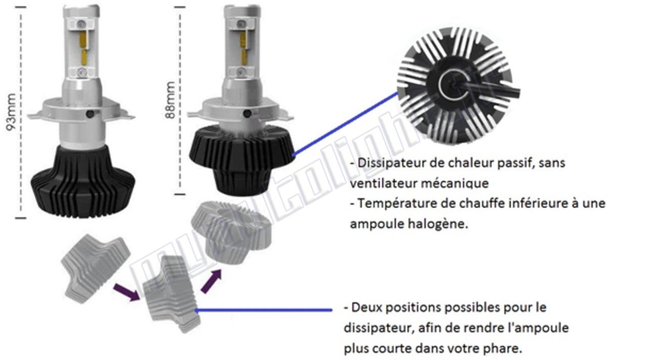 ampoules led auto moto 2